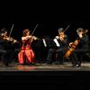 Thumbnail_quartetto_delle_marche