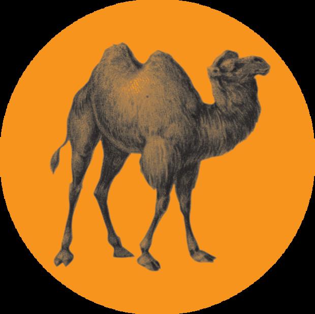 Large_logo-opera-algeri