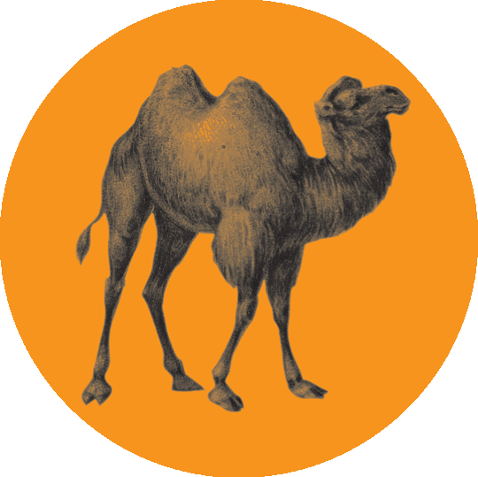 Logo-opera-algeri